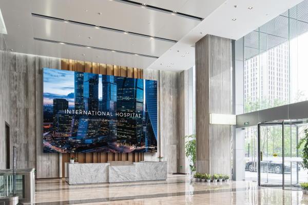 Samsung The-Wall Micro-LED Panel Luxusleinwand ohne Projektor